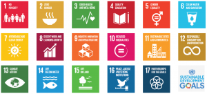 The-Global-Goals-2-300x136